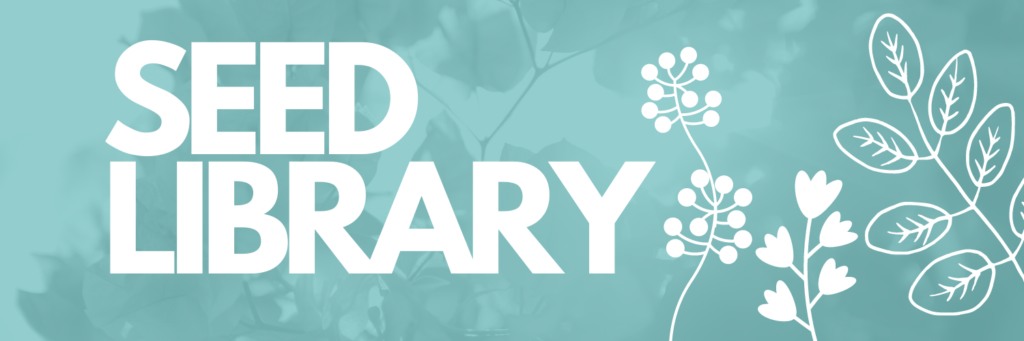 the words seed library over a teal background with cartoon flowers